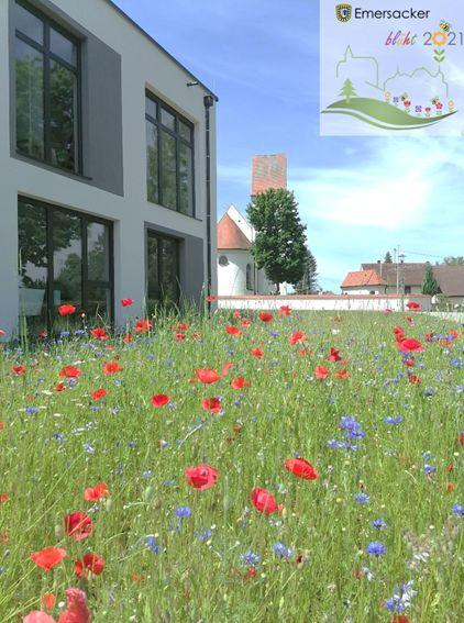 Blühflächen in der Gemeinde
